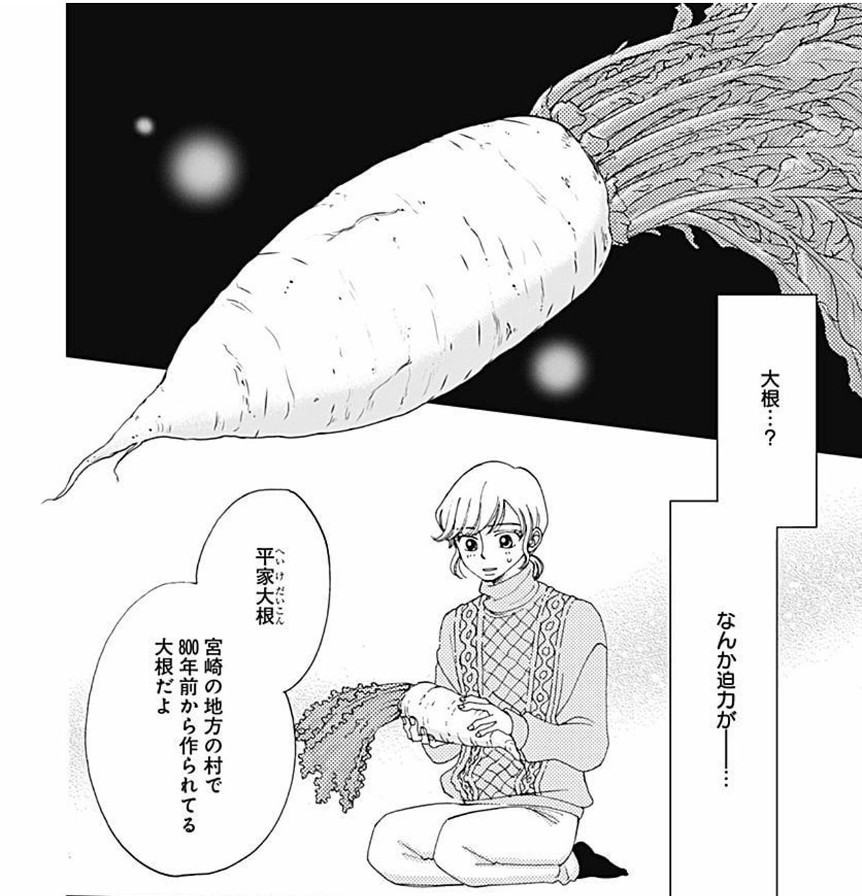 宮崎には平家の落ち武者伝説があります